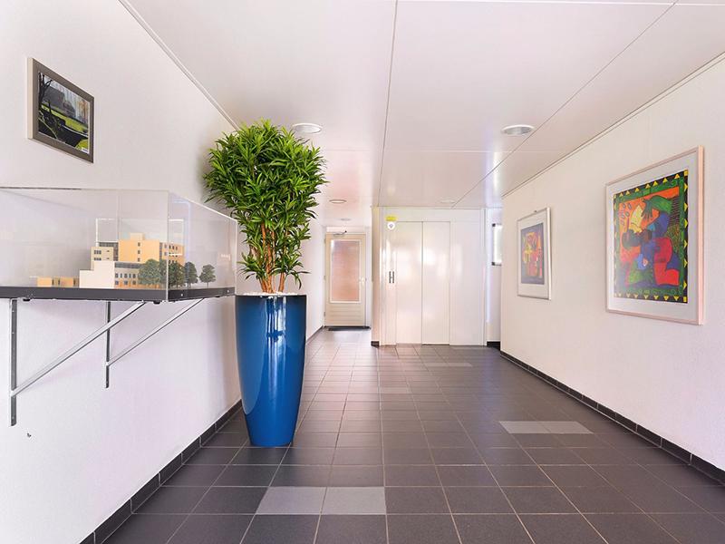 Bloemen op kantoor - Duoplant